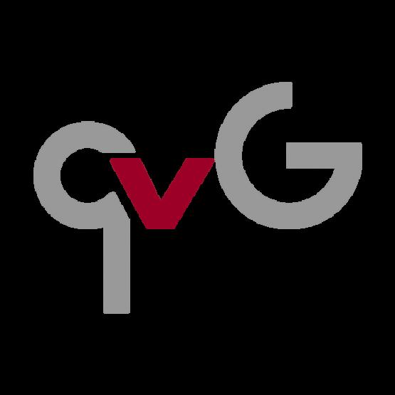 qvG eSports Logo